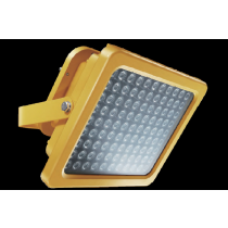 Explosion Proof 20 - 60W Depot Light